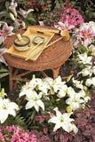 чай японца установленный традиционный Стоковое Изображение RF