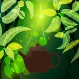 чай Бесплатная Иллюстрация