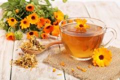 Чай Calendula с свежими и высушенными цветками на белой деревянной предпосылке Стоковое Изображение