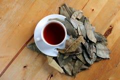 Чай Graviola Стоковые Изображения RF