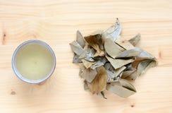 Чай Graviola Стоковое фото RF