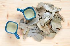 Чай Graviola Стоковое Изображение RF