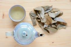 Чай Graviola Стоковые Фотографии RF