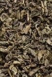 Чай Greean Стоковые Изображения RF