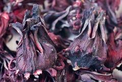 чай hibiscus стоковое изображение