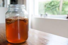 Чай Kombucha в стеклянном опарнике Стоковое фото RF