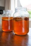 Чай Kombucha в стеклянном опарнике Стоковая Фотография
