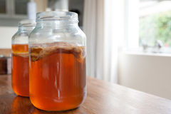 Чай Kombucha в стеклянном опарнике Стоковые Фото