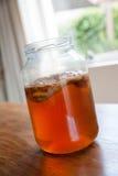 Чай Kombucha в стеклянном опарнике Стоковое Изображение RF