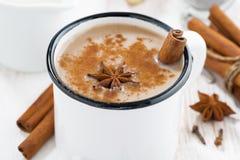 Чай Masala в чашке и ингридиентах, горизонтальных Стоковое Изображение RF
