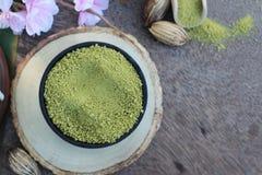 Чай Matcha зеленый и порошок, японский чай Стоковая Фотография RF