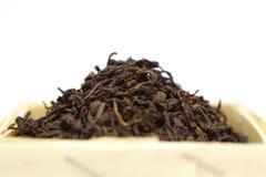 чай pu erh Стоковые Фотографии RF