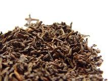 чай pu erh Стоковое Изображение