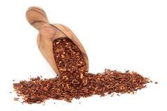 Чай Rooibos травяной Стоковое Фото