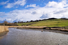 Чарс реки на Charmouth Стоковые Изображения