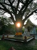 Часовня Будды Стоковое фото RF