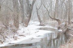Частично замороженный поток бежит через древесины в пурге Стоковая Фотография