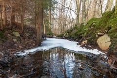 Частично замороженный поток Стоковые Фотографии RF