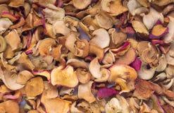 Части высушенных яблок Стоковое Фото