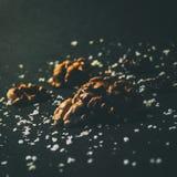 Части грецкого ореха в свете naturla стоковые фото