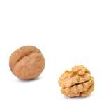 Части грецкого ореха на белой предпосылке Стоковые Изображения RF