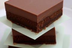 Части домодельных здоровых тортов какао с богатой, сметанообразной поливой клейковины молочного шоколада свободно стоковые фотографии rf