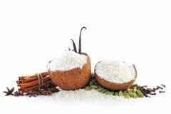 части кокоса Стоковые Фото