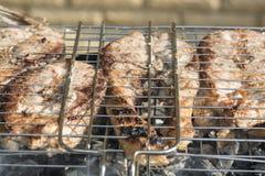 Части рыб зажарили в духовке близко вверх на плите гриля outdoors Вкусная еда рыб диеты Стоковое Изображение RF