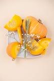 Части свежей оранжевой тыквы и высушенных цветков на белизне plat Стоковое Изображение