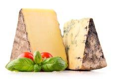 2 части сыра изолированной в белой предпосылке Стоковые Фото