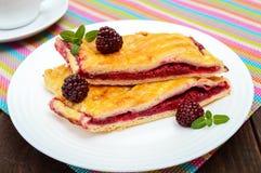 Части сладостного пирога ягоды на белых плите и чашке чаю на яркой салфетке Стоковое Изображение RF