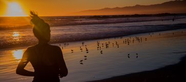 Частный пляж только для специальных гостей стоковые фото