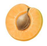 часть абрикоса Стоковое Изображение