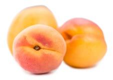 Часть абрикосов изолированных на белизне Стоковое Изображение RF