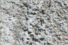 Часть бетонной стены с камешками и нашивками Стоковое фото RF
