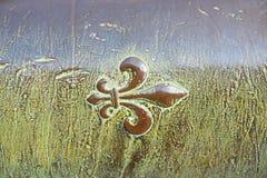 Часть бочонка старого карамболя Стоковое Изображение