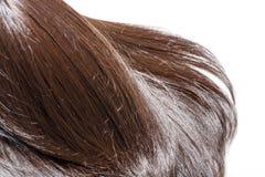Часть волос Брайна стоковые фото