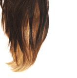 Часть волос над белизной стоковая фотография rf