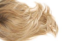 Часть волос над белизной стоковая фотография