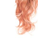 Часть волос над белизной стоковые фото