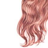Часть волос над белизной Стоковые Фотографии RF