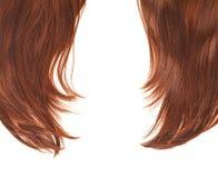 Часть волос над белизной Стоковые Изображения RF
