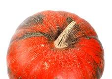 Часть зрелой тыквы на белизне Стоковые Фотографии RF
