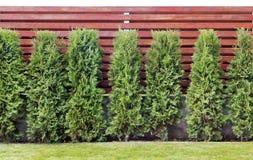 Часть изолированной красной деревянной загородки стоковое фото rf