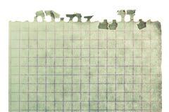 Часть листа Стоковые Фото