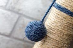 Часть кота царапая столб с шариком Стоковые Фотографии RF