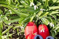 Часть красных резиновых ботинок в траве с snowdrops Стоковое фото RF