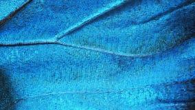 Часть крыла голубой бабочки morpho, высокое увеличение Стоковое Изображение RF