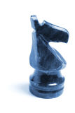 часть рыцаря шахмат Стоковые Фото