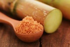 Часть сахарного тростника с красным сахаром стоковые фотографии rf